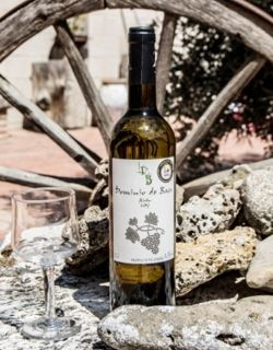 Cata de vinos Jesus Rodriguez